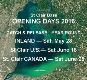 St Clair Opening Days 2016 Graphic Cropped